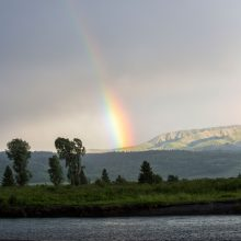 Rainbow and the Buffalo Fork River at Fire in the Mountains 2019